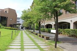 11/23(木)COS-LOGコラボイベント